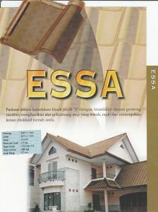 essa_detail1